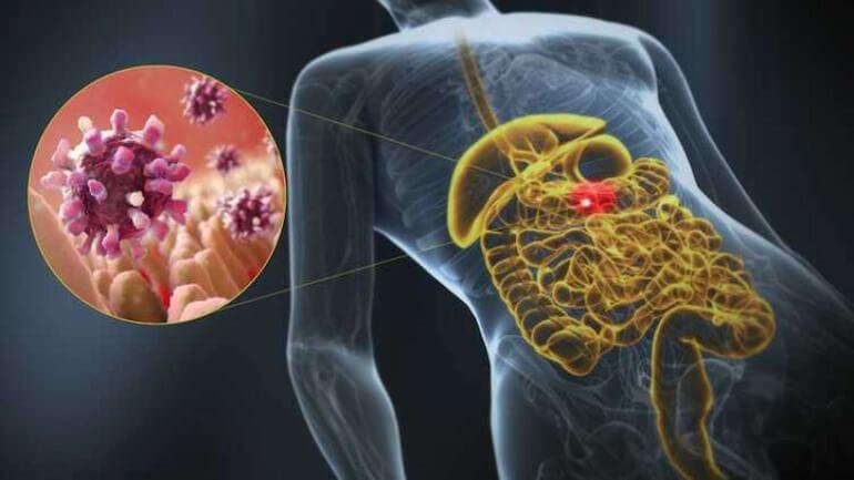 Правильное питание при гастроэнтероколите