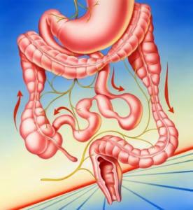 Энтеросгель при нарушение моторики кишечника