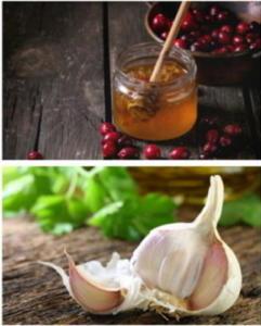 Клюква для сосудов с медом и чесноком