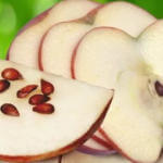 Польза яблочных косточек для человека