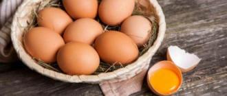 Отравление яйцами курицы