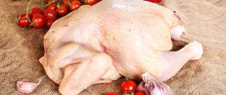 Отравление мясом кур