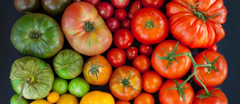 Отравление помидорами