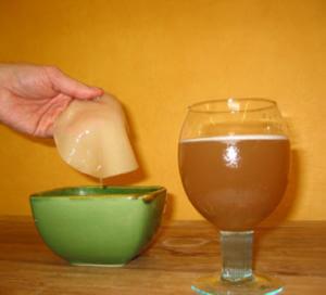 Настой чайный гриб для похудения