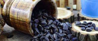Влияние жаренных семечек на организм
