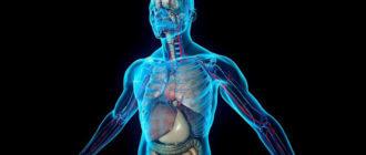 Причины появления слизи в организме человека