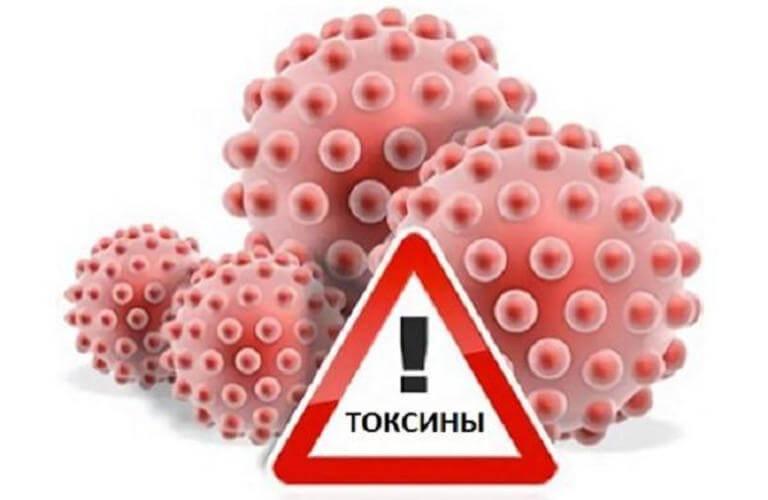 Токсическое отравление организма