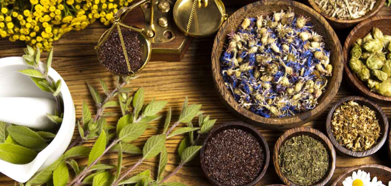 Сбор трав для очищения организма от шлаков и токсинов: какой пить для похудения