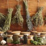 Какие травы применять при лечение почек