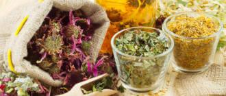 Какие травы помогут от отравления