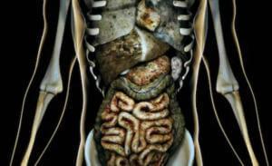 Организм после курения электронной сигареты